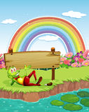A frog at the pond with a wooden board and a rainbow in the sky Royalty Free Stock Image