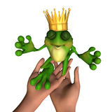 Frog Prince 5 stock photos
