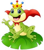 Frog prince cartoon on water lily leaf Royalty Free Stock Photo