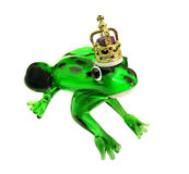 Frog prince with golden crown. Photo of fairytale frog prince wearing an ornate golden crown waiting to be kissed Royalty Free Stock Images