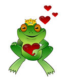 Frog prince with heart. On a white background Stock Images