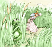 Frog prince is hiding Princess intrusive. A frog prince is hiding terrified in the pond princess intrusive search that tireless and determined Stock Photography