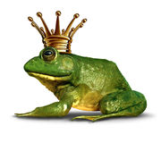 Frog Prince Side View Royalty Free Stock Image