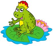 Frog prince on water lily Royalty Free Stock Image