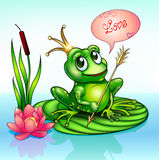 Frog princess on a leaf with a boom Royalty Free Stock Photos