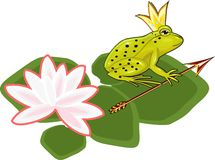 The Frog Princess Stock Photography
