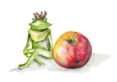 Frog  princess and red apple Stock Photography