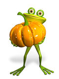 Frog with a pumpkin Royalty Free Stock Photos