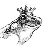 Frog queen. Ink illustration of a frog queen Stock Image