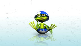 Frog in the rain stock footage