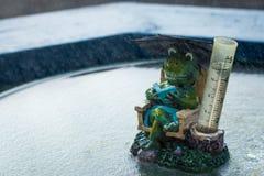 Frog Rain Gauge. Wonderful frog rain gauge ornament in the rain Royalty Free Stock Photo