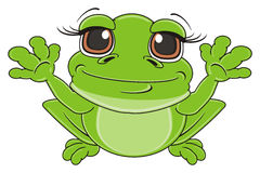 Frog raise up her  paws. Happy green frog sit and raise up her paws and watch Royalty Free Stock Image
