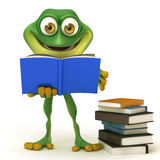 Frog read a book Stock Photography