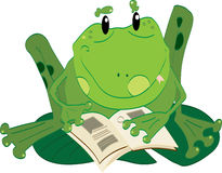 Frog reading Royalty Free Stock Images