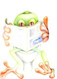 Frog relax 02 Royalty Free Stock Image