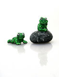 Frog on a rock with friend. A frog sitting on a rock while thinking with another frog friend nearby Stock Photos