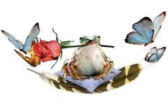 Frog_rose_surprise illustration de vecteur