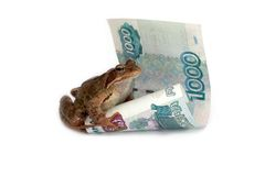 Frog and rouble Stock Images