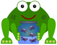Frogs pets Royalty Free Stock Photos