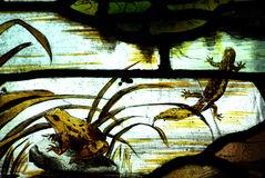 A frog and a salamander in stained glass Royalty Free Stock Photos