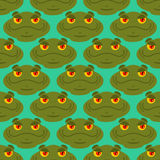 Frog seamless pattern. Amphibian ornament. Toad texture. Head of. Reptilian background Royalty Free Stock Photo