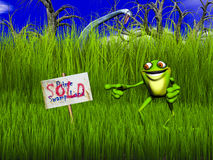 Frog Sells Swamp Land Royalty Free Stock Photography
