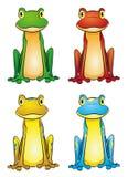 Frog-set Stock Photos