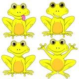 Frog set on white background vector isolated EPS 10. Lagasca set on white background vector isolated EPS 10 Royalty Free Stock Image