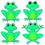 Frog set on white background vector isolated EPS 10. Lagasca set on white background vector isolated EPS 10 Stock Image