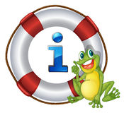 Frog showing float Royalty Free Stock Photography