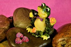 Frog singing on the rocks in the pond, concert celebration. royalty free stock photo
