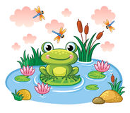 The frog sits on a leaf in the pond. stock illustration