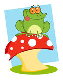 Frog sitting on a mushroom over blue. Tree frog on a toadstool over blue Royalty Free Stock Image