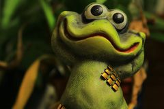 The frog smiling and happy. stock image