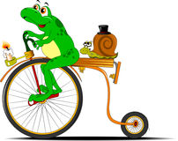 Frog and snail on a bicycle Stock Images