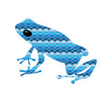 Frog with snake skin Stock Photography