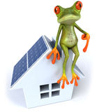 Frog with solar panels Royalty Free Stock Photography