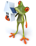 Frog with solar panels Royalty Free Stock Images