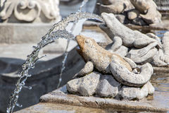 Free Frog Squirts Water - Detail Fountain Royalty Free Stock Image - 88050956