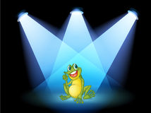 A frog on the stage with spotlights Stock Photo