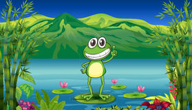 A frog standing above a water lily Stock Image