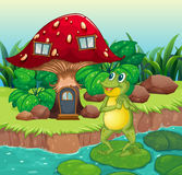 A frog standing near the red mushroom house Stock Photo