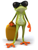 Frog and suitcase Royalty Free Stock Photo