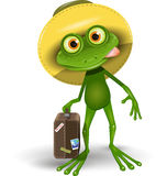 Frog with a Suitcase Stock Photography