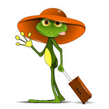 Frog with a suitcase Royalty Free Stock Photos