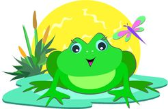 Frog in the Sun. Here is a cute Frog on a pod with the shining sun, plants, and dragonfly Stock Photo