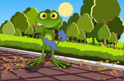 Frog sweeping track Stock Image