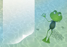 Frog swimming in the sea Stock Photography