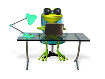 Frog at the table Stock Photo