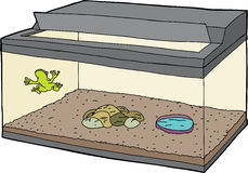 Frog in Tank with Open Lid Royalty Free Stock Photos
